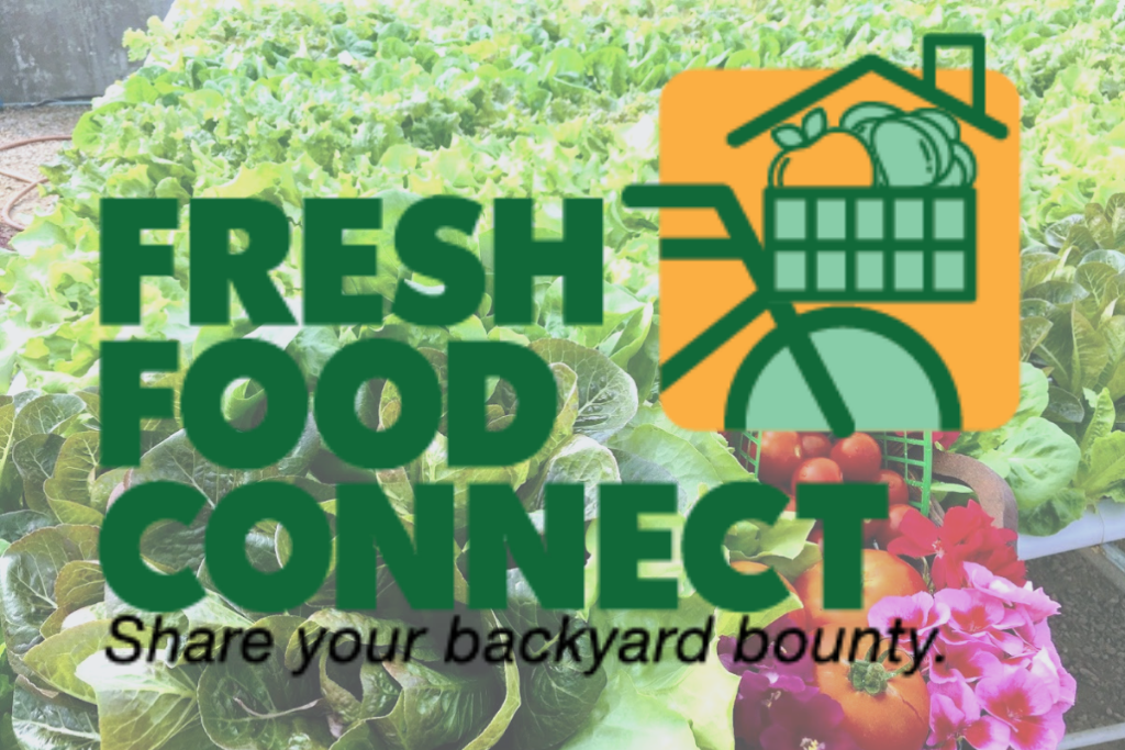 Fresh Food Connect - denver volunteers